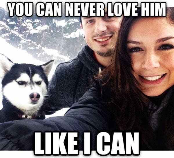 couple you can never love him memes