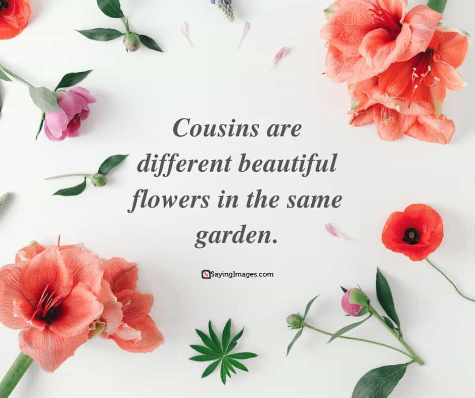 cousin flowers quotes