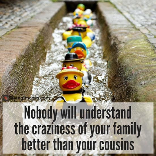 Top 30 Cousin Quotes & Sayings | SayingImages com