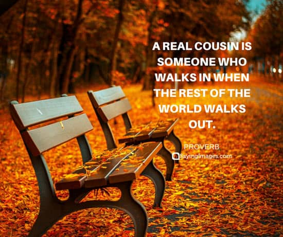 cousins friends quotes