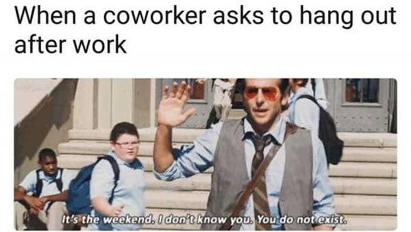 coworker asks meme