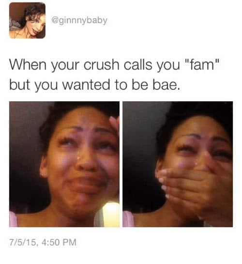 crush fam memes