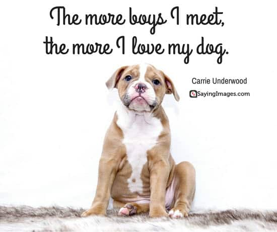 60 Dog Quotes For People Who Love Dogs SayingImages Delectable I Love My Dog Quotes