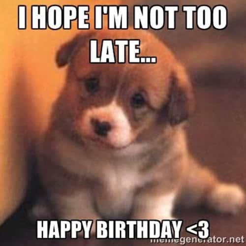 cute happy belated birthday meme