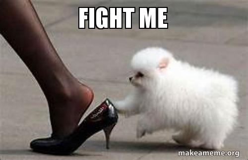 20 Fight Me Memes For When Youre Feeling Extra Brave Sayingimagescom