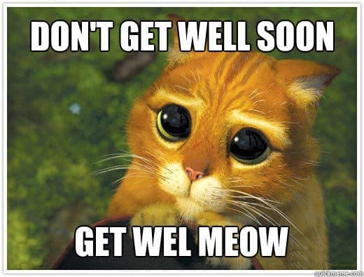 Image result for get well soon funny meme