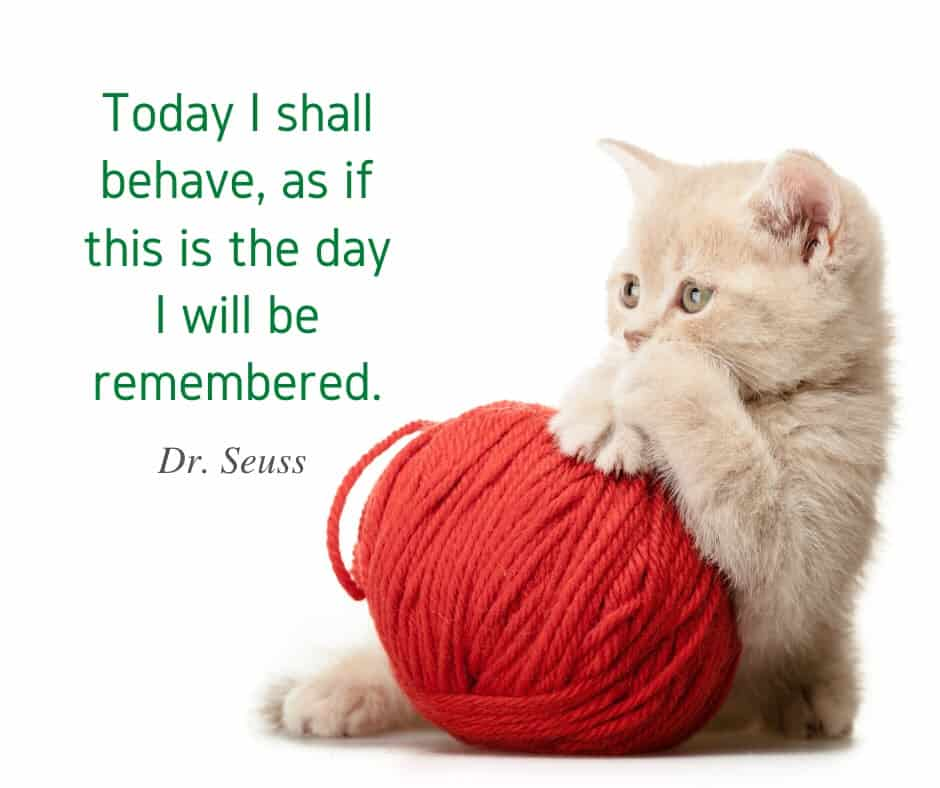 dr seuss behave quotes