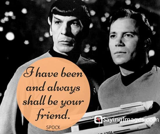 dr-spock-quotes