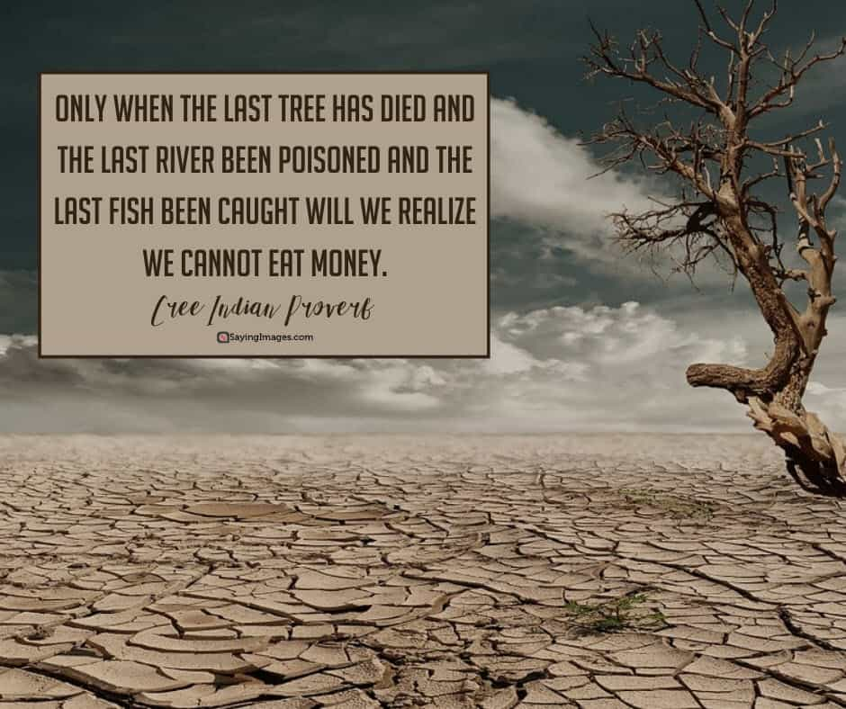 earth day money quotes