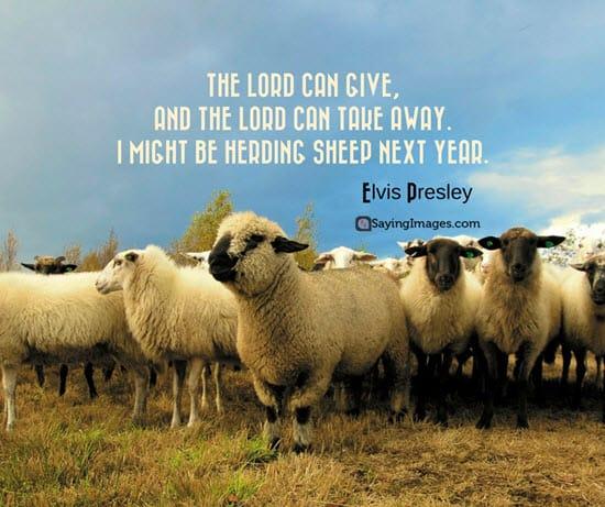 elvis presley gospel quote