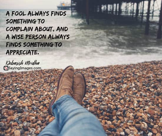 35 Fool Quotes That Will Change The Way You Think Sayingimagescom