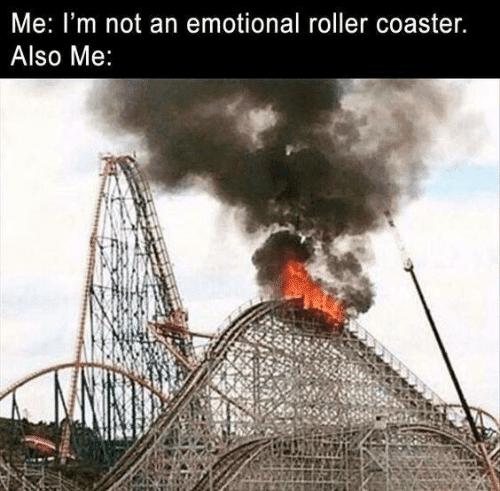 emotional rollercoaster meme