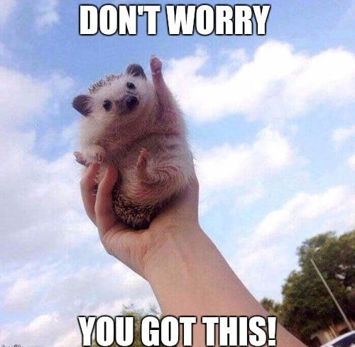 encouragement dont worry meme