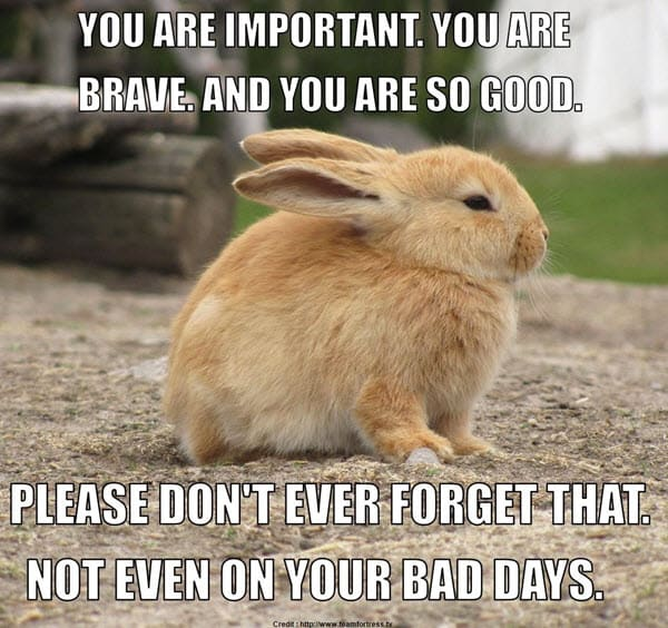encouragement you are important meme