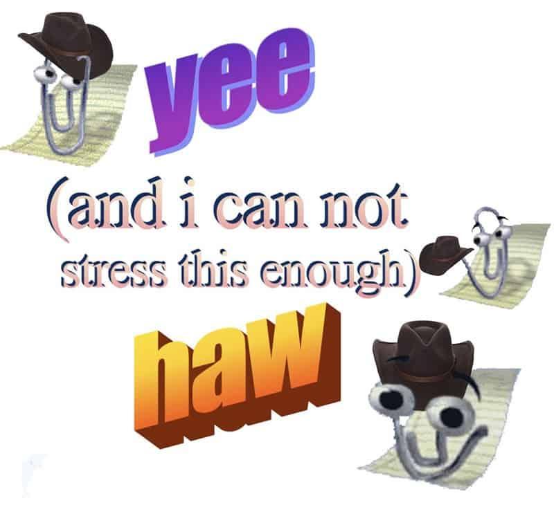 enough yeehaw meme