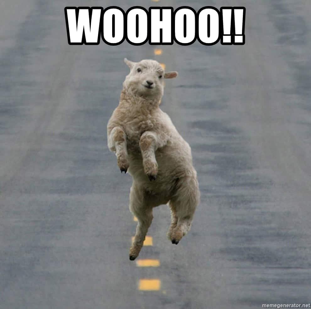 excited-sheep-woohoo-meme.jpg