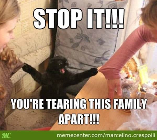 family stop it memes