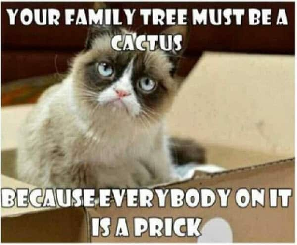 hilarious family memes you ll relate to com