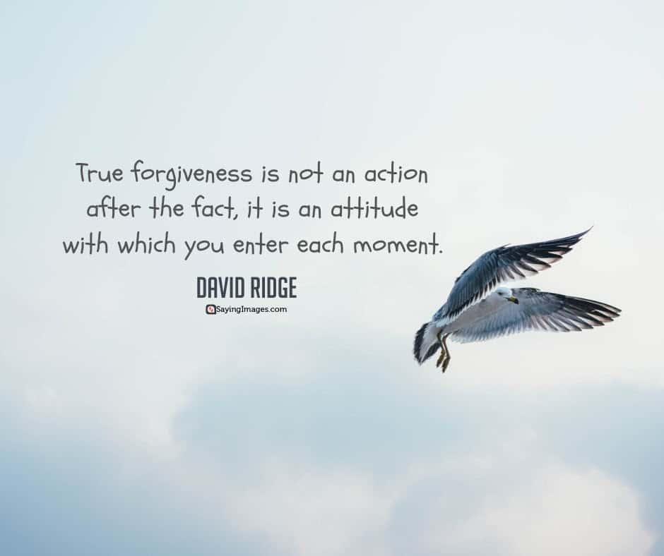 forgiveness attitude quotes
