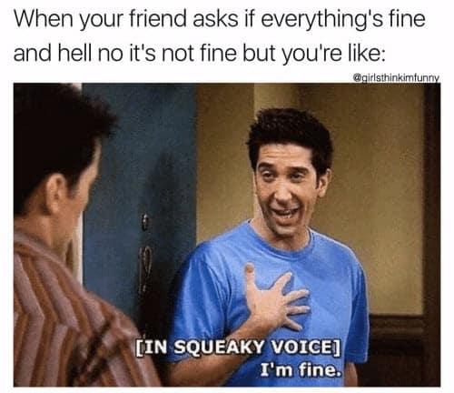 friends im fine meme