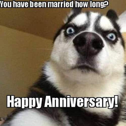 funny anniversary married long memes