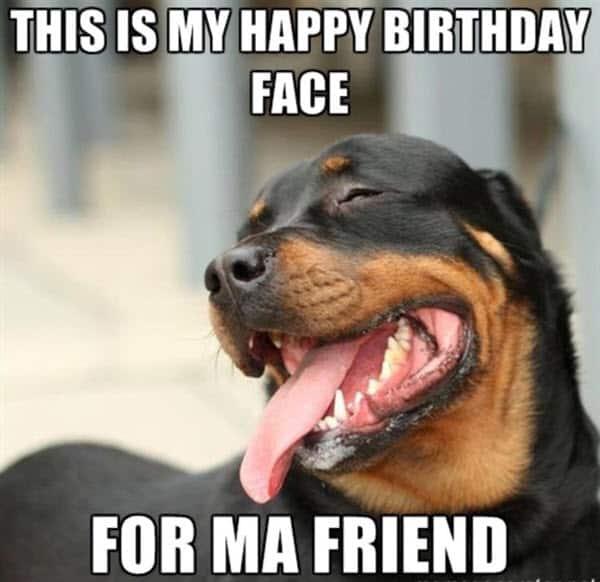 funny birthday face memes