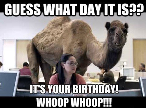funny birthday guess what day memes