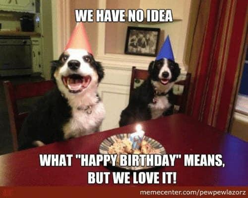 funny birthday no idea memes