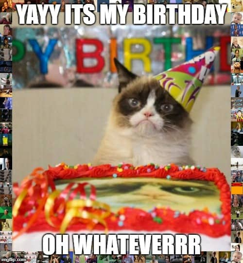 funny birthday whatever memes