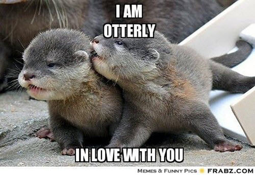 funny i am otterly in love with you meme