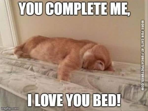 funny i love you bed meme