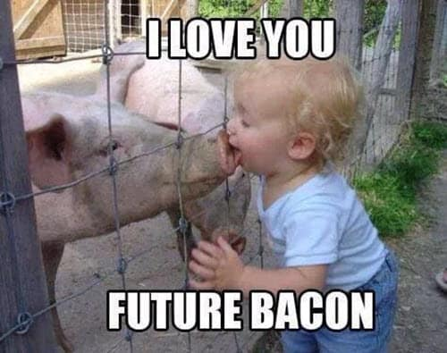 funny i love you future bacon meme