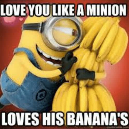 funny i love you like a minion meme