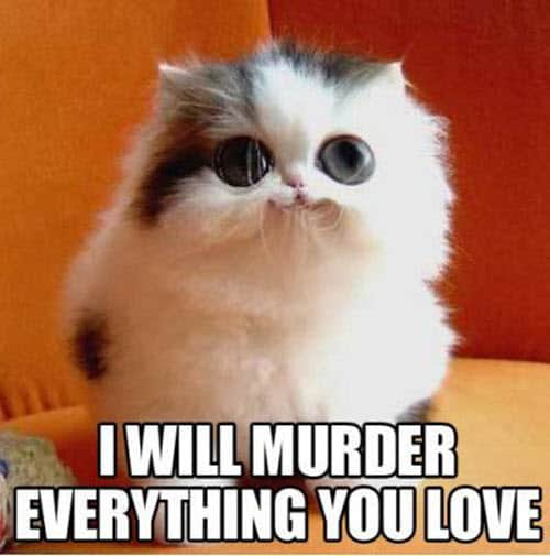 funny i love you murder everything meme