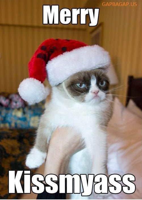 funny merry christmas kissmyass memes