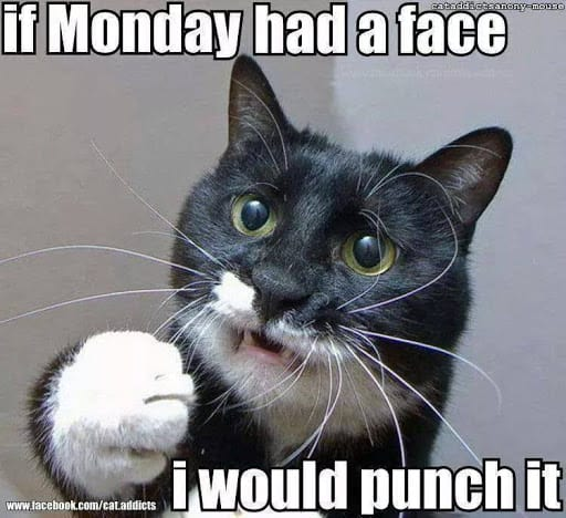 funny monday i would punch it meme