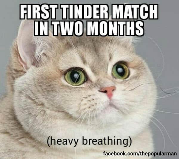 funny relationship tinder match memes