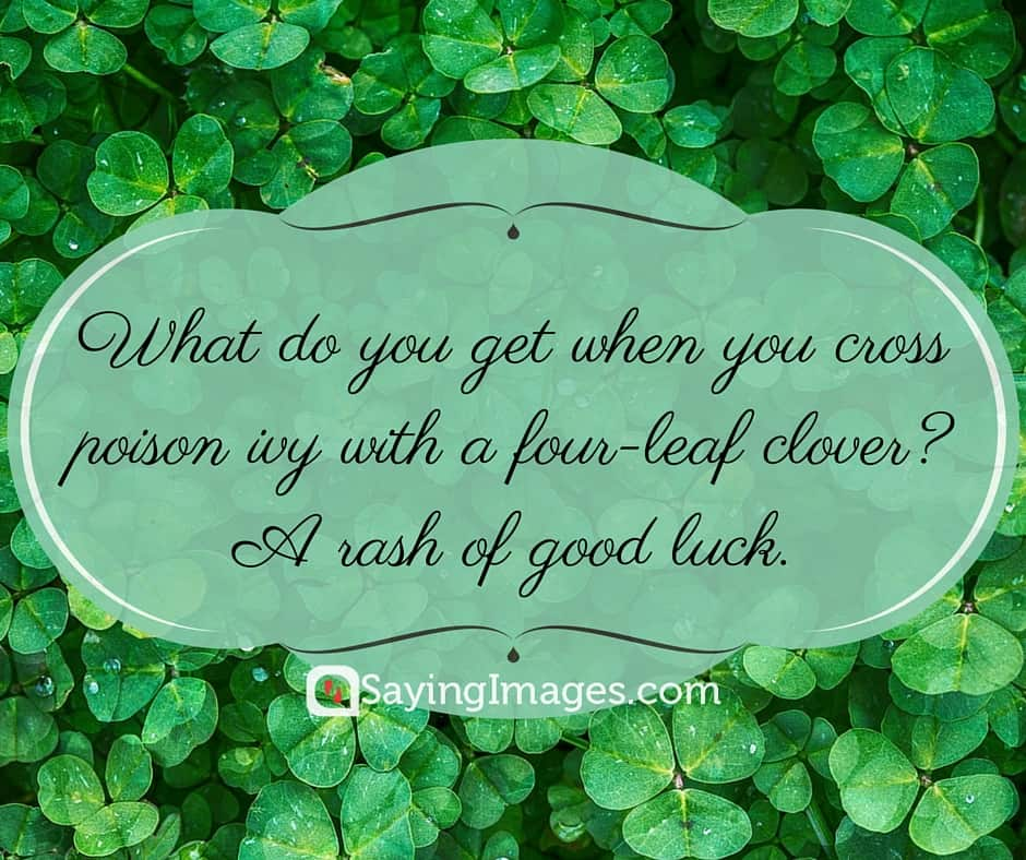 St Patricks Day Quotes Gorgeous Happy St Patrick's Day Quotes Sayings SayingImages