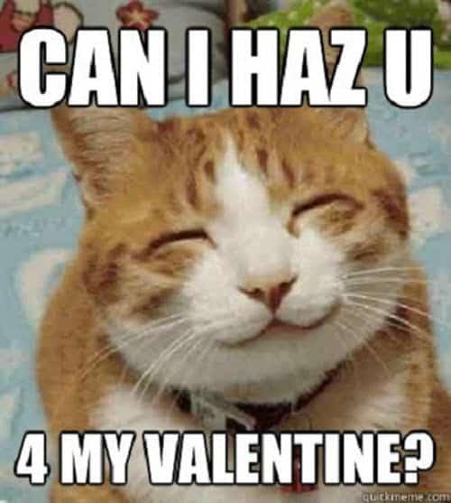 funny valentines can i haz u meme