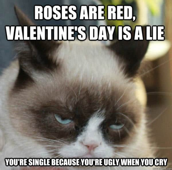 funny valentines day is a lie meme