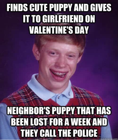 funny valentines finds cute puppy meme