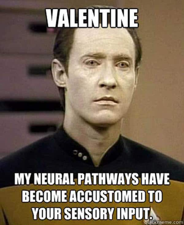 funny valentines neural pathways meme