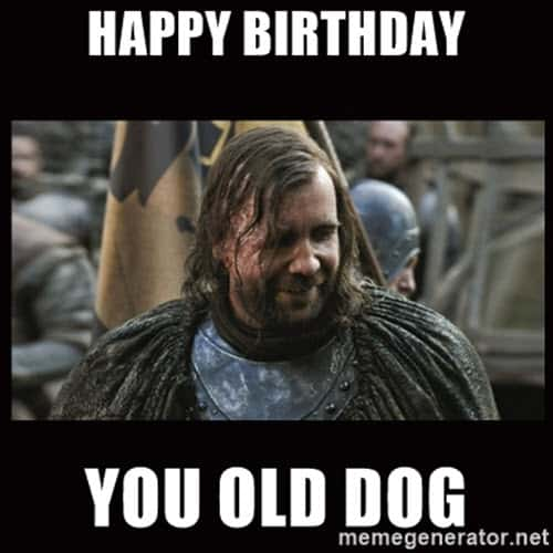 game of thrones birthday you old dog meme