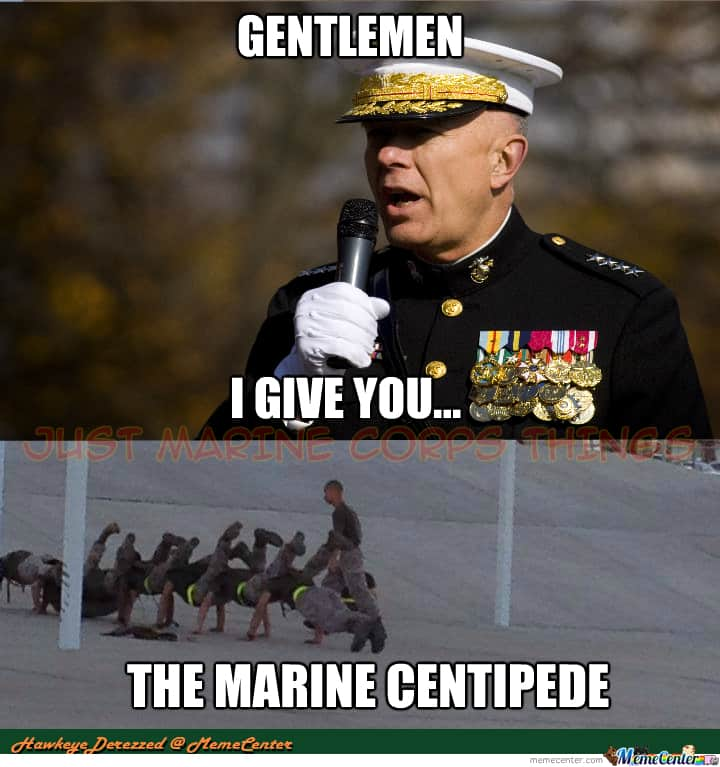 gentlemen i give you the marine centipede corps memes