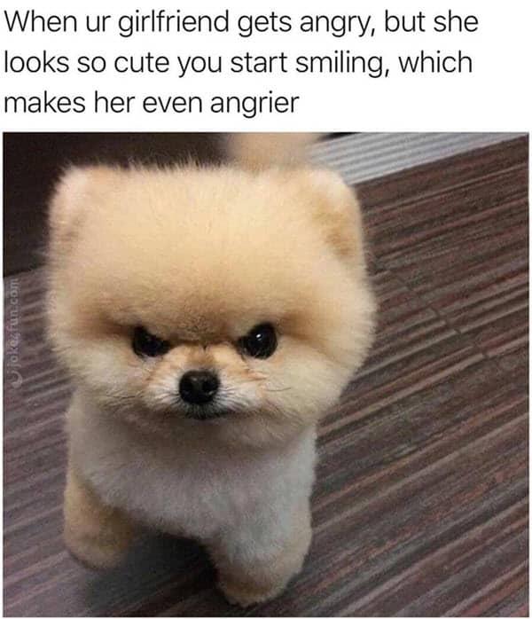girlfriend gets angry meme