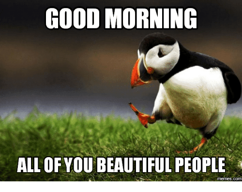 good morning all of you beautiful people meme cute & funny 'good morning beautiful' memes for your loved ones
