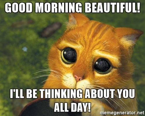 good morning thinking about you meme