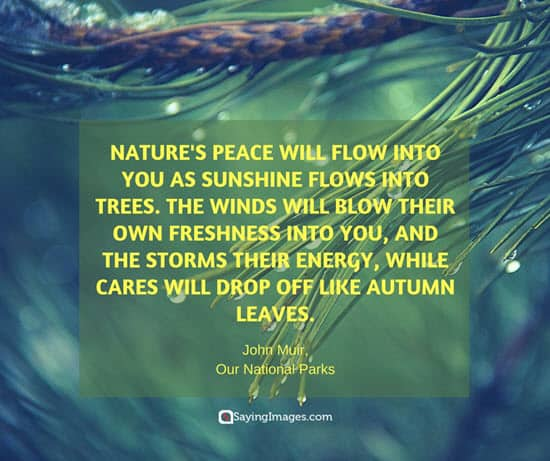 good nature quotes