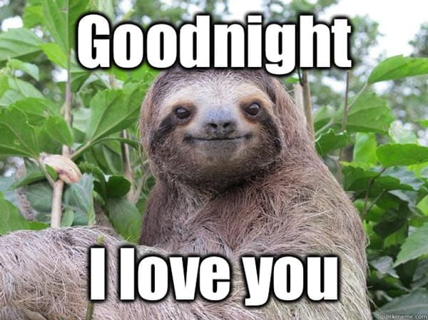 goodnight and i love you meme