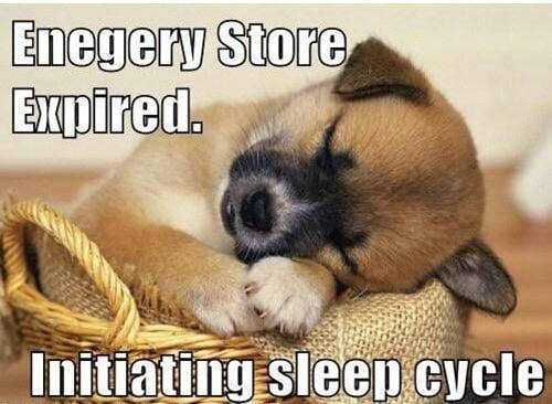goodnight energy store expired meme